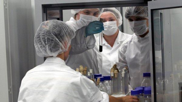 Учёные обнаружили паразита, способного заразить человека раком